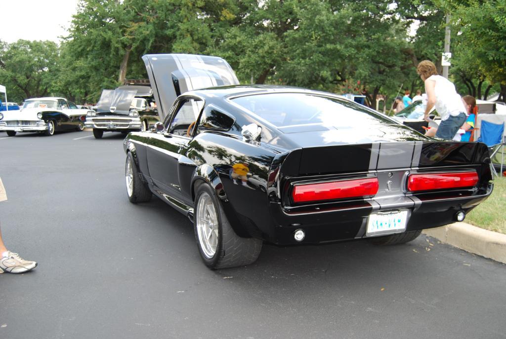 Richard S 1967 Ford Mustang Super Snake Elenaor Gt500