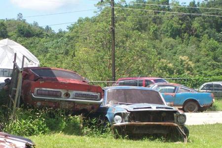 Barn Full Of Antique Cars 171 Antique Auto Club
