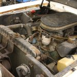 barn_find_1967_shelby_gt50004