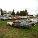 Mustang haul rusting  1