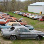 Mustang haul rusting 2