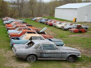 Mustang haul rusting 2