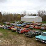 Mustang haul rusting 3