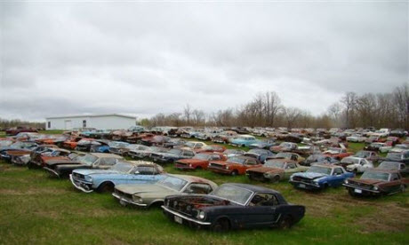 Who Remembers This Haul Of Mustangs That Were For Sale Quite A Few Years Back Its An Article Generated Lot Interest From All Over The