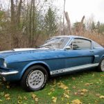 barn find shelby gt350 v1