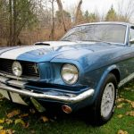 barn find shelby gt350 v13