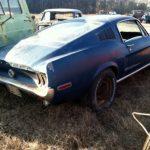 blue-fastback