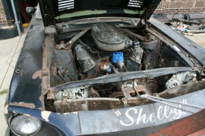 barn find 1968 shelby gt500 convertible cover 2