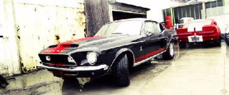 shelby_gt500_video
