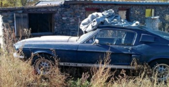 1967-Ford-Mustang-Shelby-GT500-Barn-find-720x340